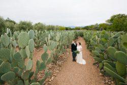 Babylonstoren-wedding-photographers-Franschhoek-photographers_0111